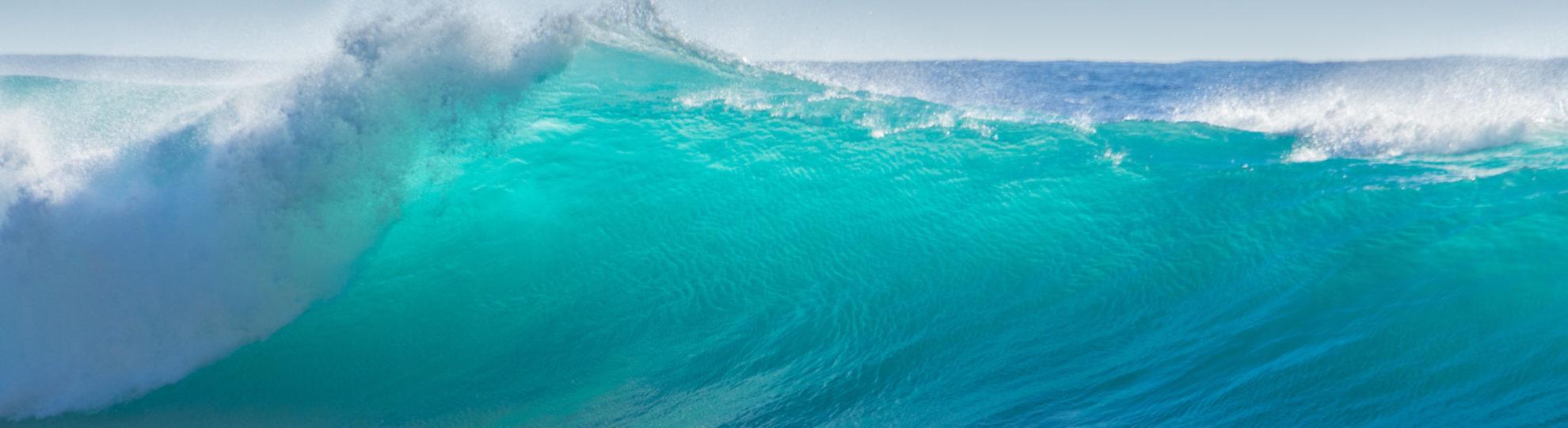 Kreuzfahrt Buchungen | Seereise buchen